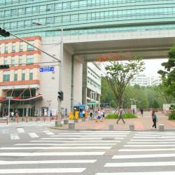 มหาวิทยาลัยฮงอิก