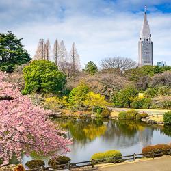 สวนชินจูกุเกียวเอน