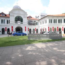 พิพิธภัณฑ์ศิลปะสิงคโปร์