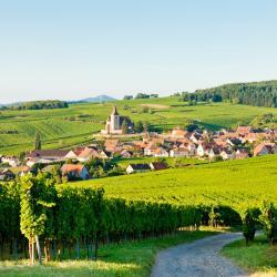 Alsace โรงแรมหรู 151 แห่ง