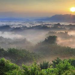 Tainan Area