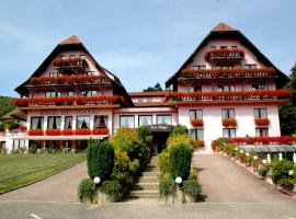 Hôtel Restaurant Des Vosges, Klingenthal