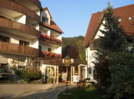 Landidyll Hotel Zum Alten Schloss, キルヒェンシッテンバッハ