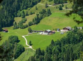 Pension Bergbauernhof Irxner, Pichl