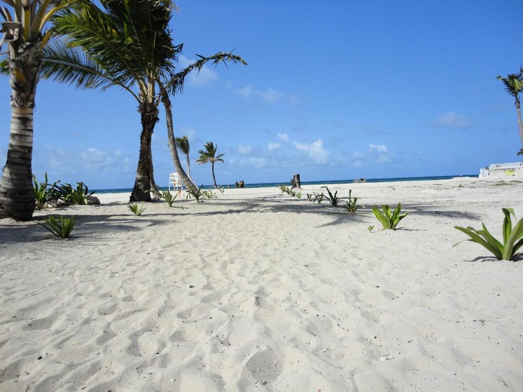установка бра пляж баваро доминикана фото хозяева заза ставить