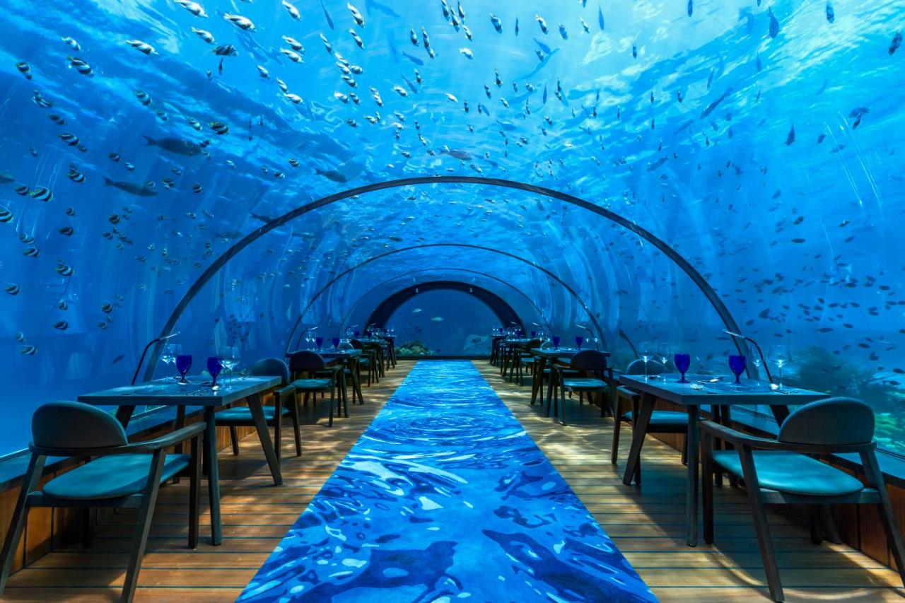 Hurawalhi Island Resort  underwater restaurant, called '5.8 Undersea'