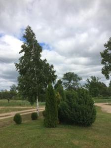 สวนหย่อมนอก Brīvdienu māja Slugas