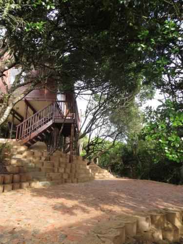Tree Top Cottage