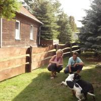 Eingezäuntes Ferienhaus für Hundeurlaub