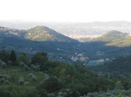 Dino, Fiesole