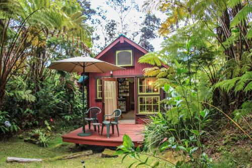 Ferny Hollow: Romantic Rainforest Cottage